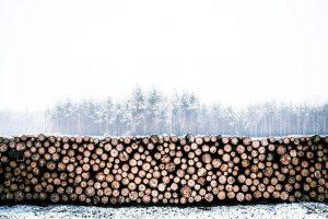 Drva na paleti močno olajšajo skladiščenje kurjave