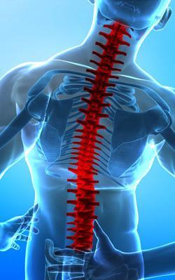 zlom hrbtenice