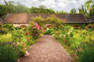 Zmogljive kosilnice na nitko opravijo tudi z zaraščenim vrtom